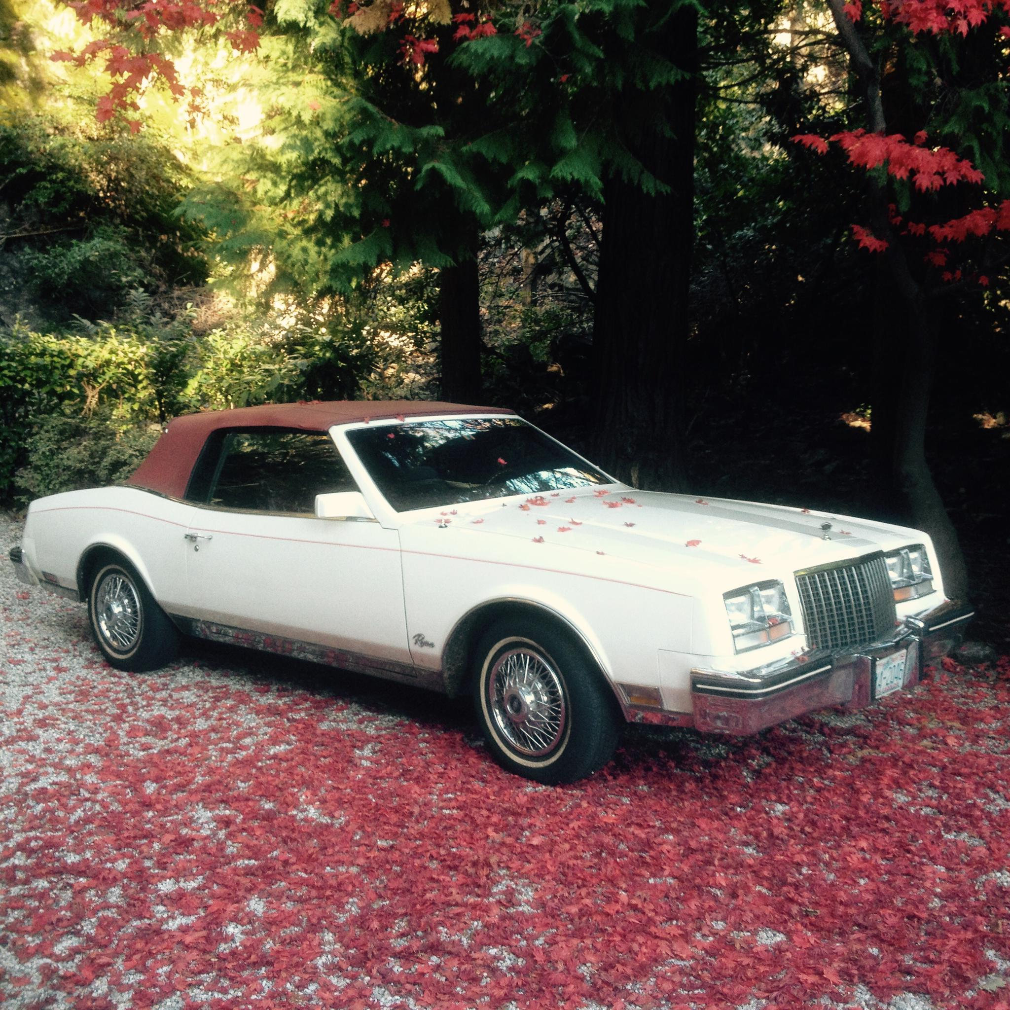 Buick Riviera 4.1 V6 Cabrio